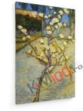 Tablou pe panza (canvas) - Vincent Van Gogh - Pear Tree in Blossom