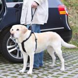 Lesă câine, tip centură de siguranță mașină- culoare neagră, 27 cm, Ham