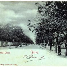 SV * Romania  IASI * BULEVARDUL  COPOU  1900 * clasica, Circulata, Printata