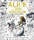 Alice in Tara Minunilor - carte de colorat | Sir John Tenniel