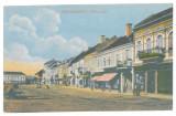 2585 - TARGU-SECUIESC, Covasna, Market, Romania - old postcard - unused - 1917