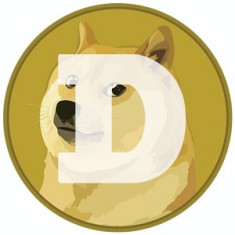 DOGE Coin  SSD 1TB HDD RAM ECC Server