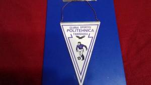 fanion     Poli  Timisoara