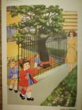 Afise / Planse scolare, didactice, apx. 70x50 cm, comunism, epoca aur, romanesti