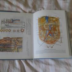 Anatomia omului  figuri si planse color ,1998, Papilian , 2 volume, NOI, ed. ALL