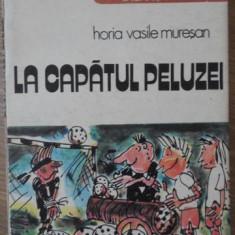 LA CAPATUL PELUZEI - HORIA VASILE MURESAN