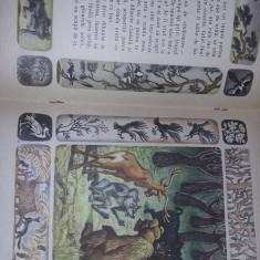 Carte veche Copii,Vulpoiul deghizat-Ivan Franko,1985, ilustratii Artiusenko,T.GR