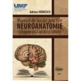 Neuroanatomie. Manual de lucrari practice si topografia capului si gatului - Adrian Ivanescu