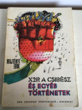 Majtényi Erik, X2R, csibész és egyéb történetek, Bucuresti 1979