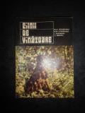 N. A. STRAVOIU, I. MANOIU, L. BRATU - CAINII DE VANATOARE (1976)