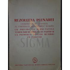 REZOLUTIA PLENAREI - ***