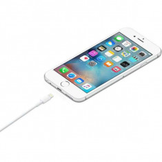 Apple iPad 5 Air Lightning to USB Cablu Original