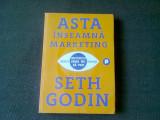 ASTA INSEAMNA MARKETING - SETH GODIN