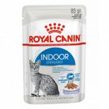 Royal Canin Indoor Sterilised In Jelly Pliculeț 85 g