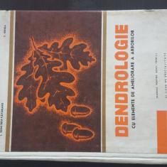 Dendrologie - I. Dumitru - Tataranu,  1969