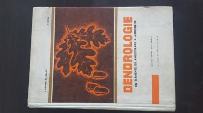 Dendrologie - I. Dumitru - Tataranu,  1969 foto