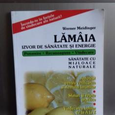 LAMAIA, IZVOR DE SANATATE SI ENERGIE de WERNER MEIDINGER 2002