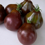 Rosii , tomate cherry negre BLACK TRUFFLE - 10 seminte pentru semanat