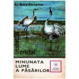 Minunata lume a pasarilor