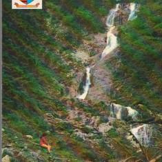 """CPI B 12267 CARTE POSTALA - BORS. CASCADA """"IZVORUL CAILOR"""", Necirculata, Fotografie"""