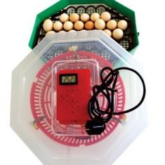 Incubator electric cu dispozitiv de intoarcere si termostat 41 oua gaina - 74...
