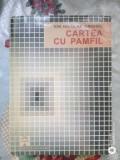 Cartea cu Pamfil-Ion Nicolae Anghel, Alta editura