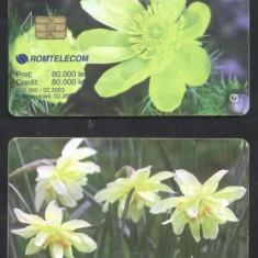 Romania 2003 Telephone card Flowers Rom 179 CT.054