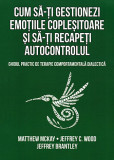 Cum sa-ti gestionezi emotiile coplesitoare si sa-ti recapeti autocontrolul. Ghidul practic de terapie comportamentala dialectica
