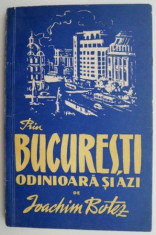 Prin Bucuresti, odinioara si azi ? Ioachim Botez foto