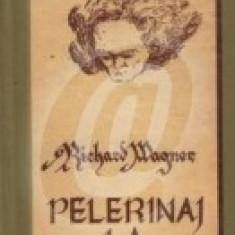 Pelerinaj la Beethoven (Ed. Muzicala)