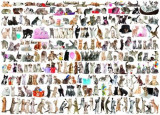Puzzle Eurographics - 1000 de piese - The World of Cats