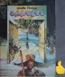 Carusel Sandu Florea