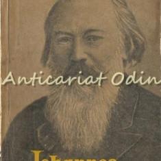 Johannes Brahms - M. S. Druskin