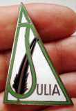 I.010 INSIGNA MILITARA ITALIA VANATORI DE MUNTE BRIGADA BRIGATA ALPINA JULIA, Europa