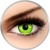 Fancy Rogue - lentile de contact colorate verzi anuale - 360 purtari (2 lentile/cutie)