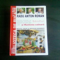 BANATUL SI MUNTENIA COLINARA - RADU ANTON ROMAN