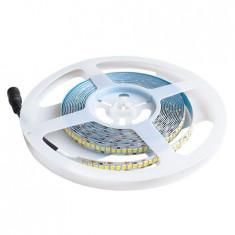 BANDA LED SMD2835 240LED/M 6400K IP20 5M