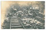 4492 - SIGHISEL, Bihor, scouts and railway, Romania - old postcard - unused, Necirculata, Fotografie