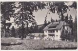bnk cp Borsec - Casa de odihna -  circulata