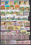 Lot  mare de timbre  fauna  FELINE    stampilate  7 poze, Stampilat