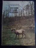 Din Fauna Si Flora Romaniei - Ion Simionescu ,546049