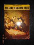 DEM. THEODORESCU - MIC ATLAS DE ANATOMIA OMULUI (1974, editie cartonata)