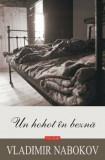 Un hohot in bezna/Vladimir Nabokov
