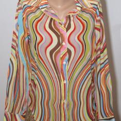 Camasa multicolora Paul Smih