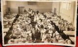 WW2 - Fotografie veche din Sibiu - foto Emil Fischer
