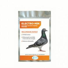 Supliment nutritiv pentru porumbei Electro-Min, Pasteur, 20 g