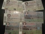 Rapid Bucuresti (lot 8 bilete/2009-2013) - vezi descrierea