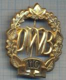 "AX 223 INSIGNA -TURISM MONTAN - DRUMETIE - ,,DWB"" 110 -FRUMOASA"