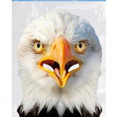 Masca Party Vultur - 29 X 21 cm, Radar EAGLE01
