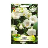 Seminte flori Florian Cobea alba 1 g